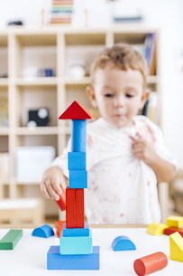 Little boy built a tower with blue and red building bricksの写真素材 [FYI04344039]