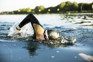 Triathlete swimming in lakeの写真素材 [FYI04344130]