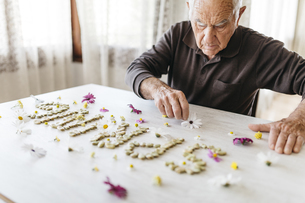 Senior man shaping the word 'spring' with dried beans surrouの写真素材 [FYI04344394]
