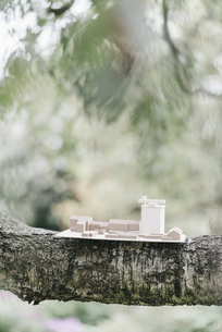 Architectural model on a branchの写真素材 [FYI04344660]