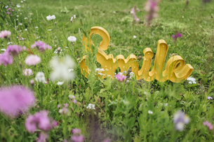 The word 'Smile' on field of flowerの写真素材 [FYI04344812]