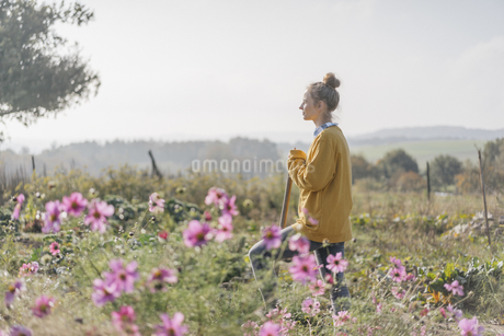 Young woman with spade in cottage gardenの写真素材 [FYI04345296]