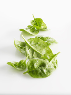 Raw Leaf spinach on white backgroundの写真素材 [FYI04345882]