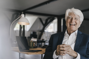 Portrait of laughing senior businessman in his officeの写真素材 [FYI04346429]