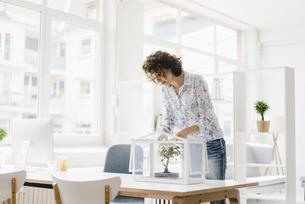 Businesswoman in office taking care of bonsai treeの写真素材 [FYI04347039]