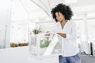Smiling young woman in office caring for plants in glass boxの写真素材 [FYI04347697]