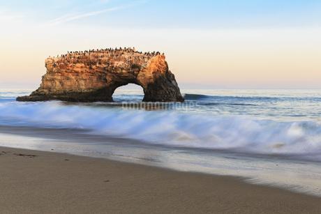 USA, California, Santa Cruz County, Big Sur, Pacific Ocean,の写真素材 [FYI04349172]