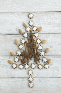 Christmas tree shaped of cinnamon stars, cinnamon sticks, alの写真素材 [FYI04349436]
