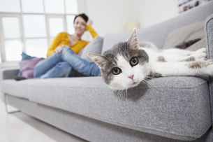 Germany, Bavaria, Munich, Mid adult woman with cat on couch,の写真素材 [FYI04351105]