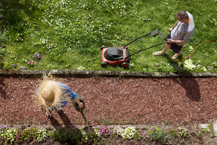 Couple gardening in springの写真素材 [FYI04351951]