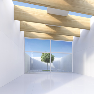 View through white hall to single tree standing in a courtyaのイラスト素材 [FYI04357904]