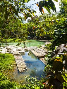 Jamaika, Region Montego Bay, Rafting Village, Martha Brae riの写真素材 [FYI04363934]