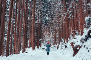 Rear View Of Woman Walking On Snow Covered Field In Forestの写真素材 [FYI04391107]