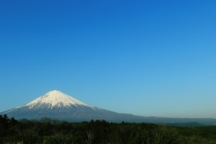 Scenic View Of Mt Fuji Against Clear Blue Skyの写真素材 [FYI04394807]