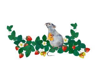 ネズミと苺のイラスト素材 [FYI04395326]