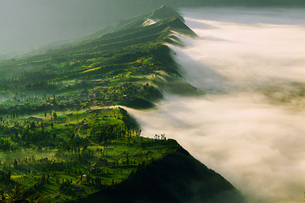 Scenic View Of Cemoro Lawang Villageの写真素材 [FYI04398072]