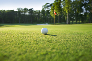 Golf Ball On Green Playing Field In A Sunny Dayの写真素材 [FYI04398365]