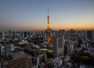 Illuminated Tokyo Tower In City Against Clear Sky During Sunsetの写真素材 [FYI04398874]
