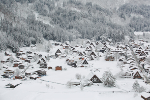 Close-up Of Shirakawa Village On Snow Covered Landscapeの写真素材 [FYI04400282]