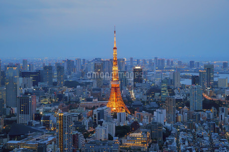 Aerial View Of Illuminated Tokyo Cityscapeの写真素材 [FYI04401559]