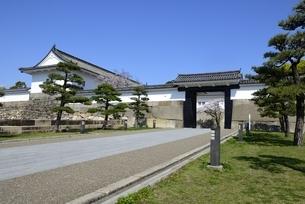 大阪城公園,大手門通り入口の写真素材 [FYI04410858]