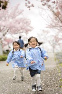 桜咲く道を走るスモック姿の女の子の写真素材 [FYI04411825]