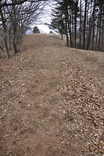 山頂へ向かう道の写真素材 [FYI04412265]
