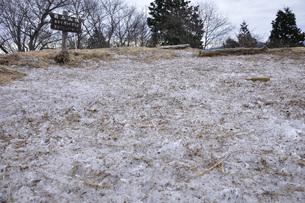 霜柱の扇山山頂の写真素材 [FYI04412501]