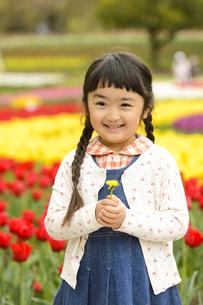 チューリップ畑の前で立つ女の子の写真素材 [FYI04412924]