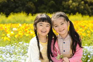 花畑の前に向かい合って座る女の子の写真素材 [FYI04413260]