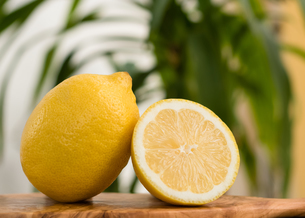 Close-up Of A Whole And A Half Lemonの写真素材 [FYI04414177]
