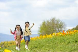 花を片手に手を繋いで歩く女の子の写真素材 [FYI04427811]