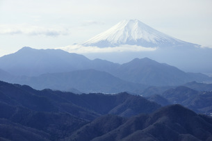 百蔵山より富士山の写真素材 [FYI04428712]