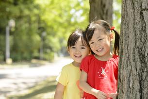 木陰で並んで立つ女の子の写真素材 [FYI04429422]
