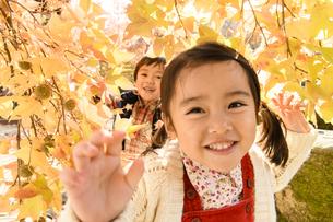 紅葉の下をくぐる子供の写真素材 [FYI04429696]