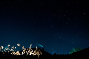 Low Angle View Of Stars In Sky At Nightの写真素材 [FYI04437835]