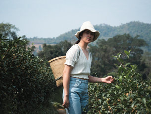 Portrait Of Young Woman Standing At Tea Plantationの写真素材 [FYI04442938]