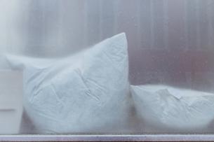 Close-up Of Pillows Seen Through Windowの写真素材 [FYI04443723]