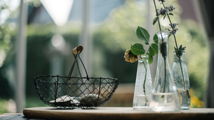 Close-up Of Plants In Glass Containers On Tableの写真素材 [FYI04458687]