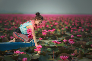 Young Woman Touching Flowers While Traveling In Boat On Lakeの写真素材 [FYI04468601]