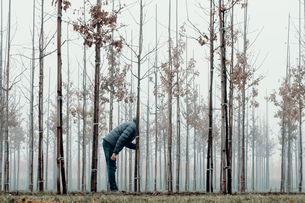 Man Standing By Bare Trees In Forest Against Skyの写真素材 [FYI04471457]