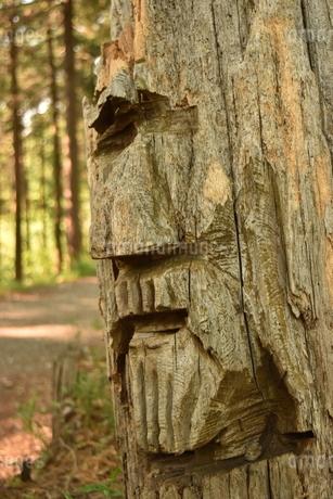 森の神の写真素材 [FYI04482198]
