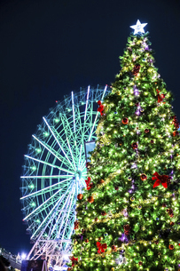 クリスマスツリーとライトアップされた大観覧車の写真素材 [FYI04482280]