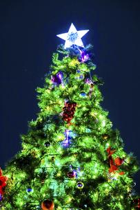 ソフトフォーカスしたクリスマスツリーの写真素材 [FYI04482281]