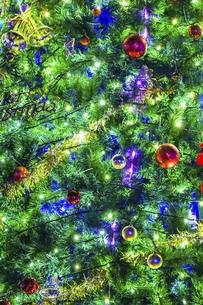 ソフトフォーカスしたクリスマスツリーの写真素材 [FYI04482287]