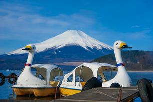 スワンボートの浮かぶ山中湖畔から富士山の写真素材 [FYI04482452]
