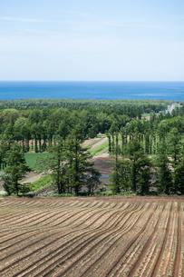展望台から眺める道東の風景の写真素材 [FYI04482496]