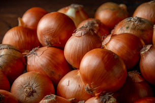Fresh ripe onions on wood background.の写真素材 [FYI04482712]