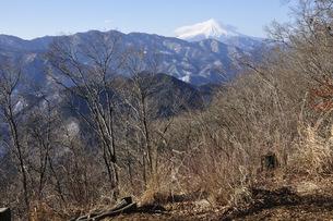 倉岳山より望む富士山の写真素材 [FYI04482876]