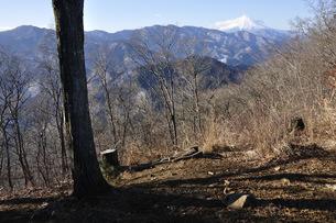 倉岳山より望む富士山の写真素材 [FYI04482877]